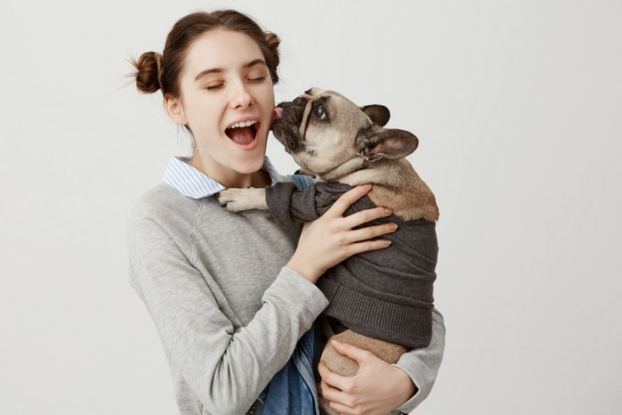 Die Geschichte der Französischen Bulldogge beginnt in England - was man ihr heute nicht mehr ansieht, oder? (Foto: shutterstock - Cookie Studio)