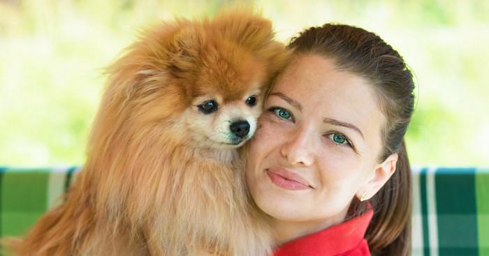 Der Pomeranian passt zu mir, wenn... (Foto: shutterstock - ElenaYakimova)