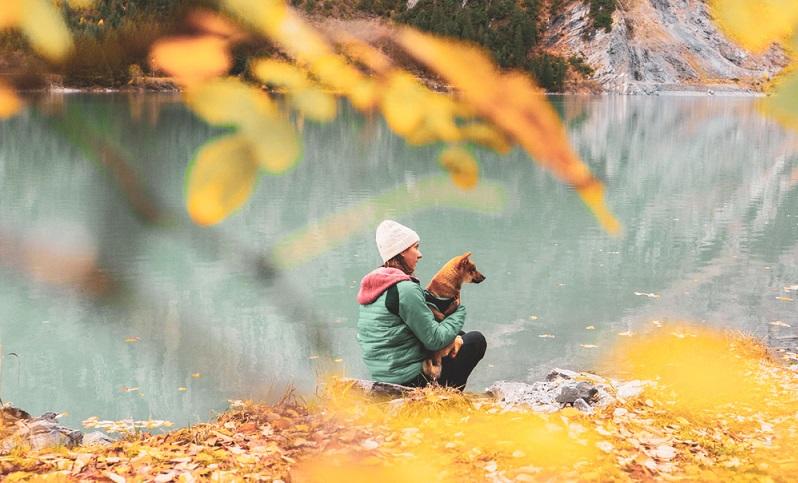 Der Shiba Inu ist als Jagdhund am liebsten draußen unterwegs. Als Sportpartner fürs Joggen, Radfahren oder Wandern ist er sofort dabei. ( Foto: Shutterstock-_Thürler Baptiste )
