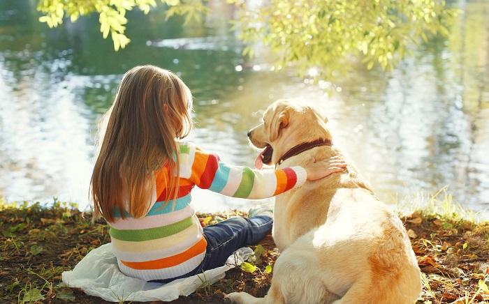 Labbis lieben es, Zeit mit großen und kleinen Zweibeinern zu verbringen. (Foto: shutterstock.com / Rohappy)