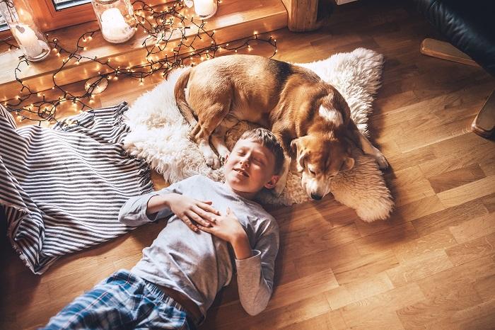 Ein ausgewachsener und gefestigter Hund sorgt für eine entspannte Atmosphäre. (Foto: shutterstock.com / Soloviova Liudmyla)