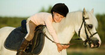 Eigenes Pferd, Pflegepferd oder Reitbeteiligung?