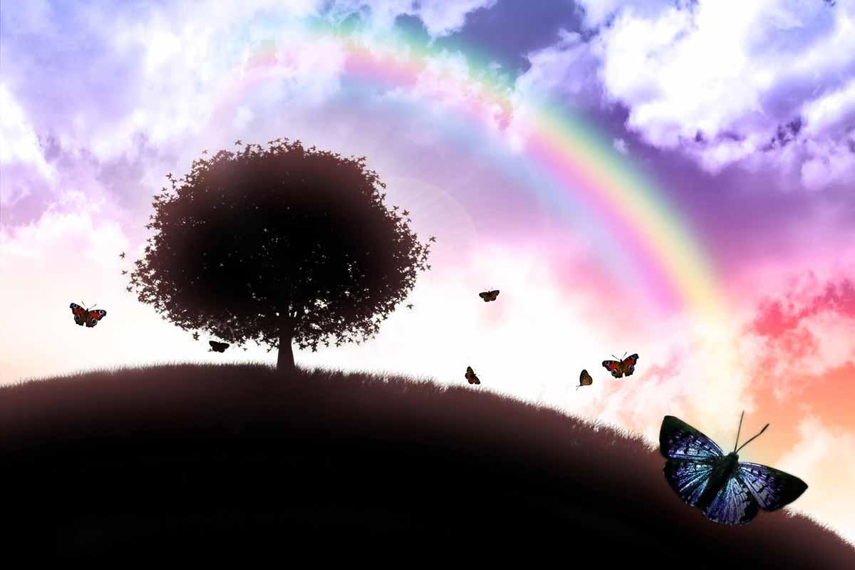 rainbowbridge1200x800