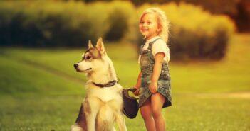 Unterschiede bei Hundeleinen