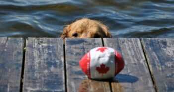 Mit dem Hund durch Kanada: im Holiday-Home-Car von Edmund Kunke
