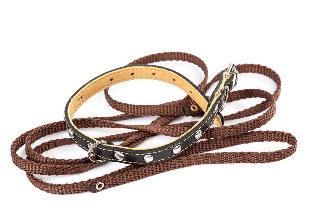 Lederhalsband mit farblich passender Hundeleine. (#04)