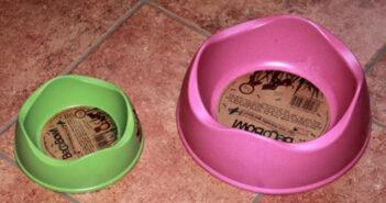Hundenapf: Porzellan, höhenverstellbar oder gar mit Namen? – alles ist möglich