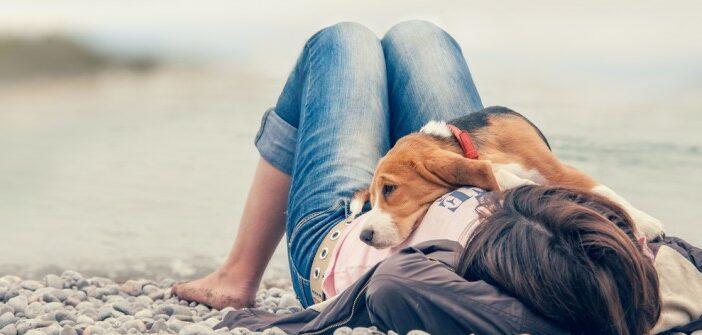 Freundschaften fürs Leben schließen: Fressnapf macht seit 25 Jahren Mensch und Fellnasen glücklich