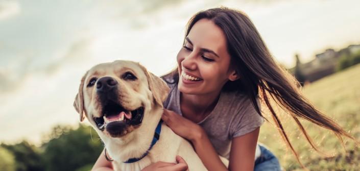Labrador Dem Familienhund Auf Den Zahn Gefuhlt