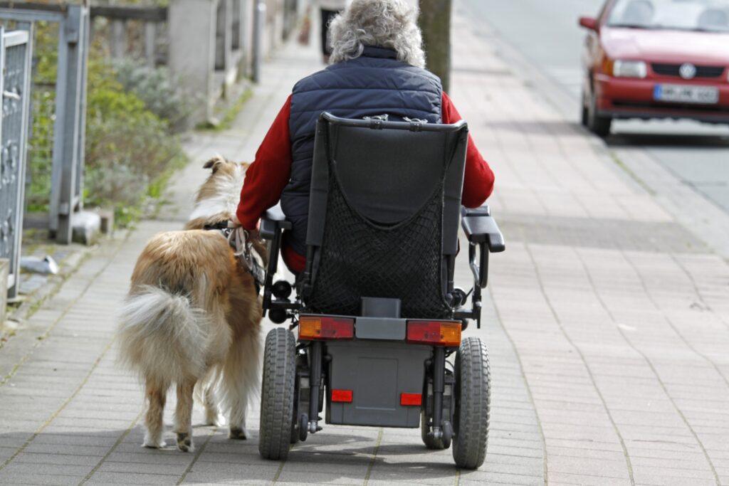 Ältere gehbehinderte Menschen und ein leinenführiger Hund, eine tolle und wertvolle Kombination