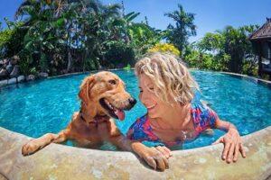 Oftmals halten sich Hundebesitzer auch nicht an die Leinenpflicht und lassen ihre Hunde überall frei laufen. (#05)