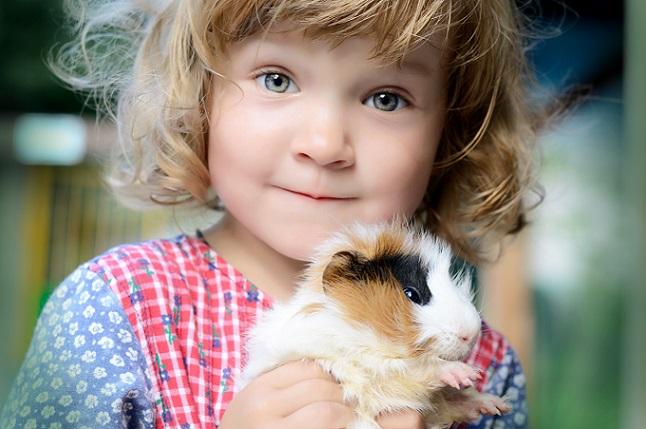 Nagetiere sind bei Kindern sehr beliebt, da sie handlich sind, einfach hochgenommen werden können und ein kuscheliges Fell haben.