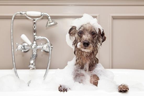 Von Badespaß kann keine Rede sein.