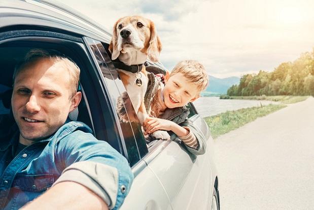 Viele denken, dass die Größe des Hundes etwas mit der benötigten Bewegungsmenge zu tun hat.(#01)