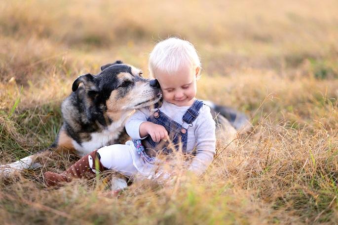 Gerade, wenn es Familienzuwachs gegeben hat, ist es essenziell, dass sie Ihrem Haustier vertrauen können. (#16)