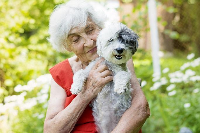 Ist der Hund ein Familienmitglied, hat er seinen festen Platz in der Rangordnung und ist dem Menschen ein guter Freund.. (#17)