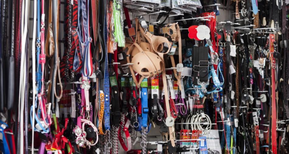 Leine und Maulkorb gehört zum guten Reisegepäck für Hunde. (#1)