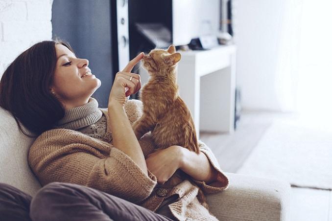 Eine Katze ist ein treuer Begleiter durch einen langen Teil des Lebens. Durch ihren individuellen Charakter, ihre Nähe und ihr Verhalten bringt sie dem Halter viel Freude. (#01)