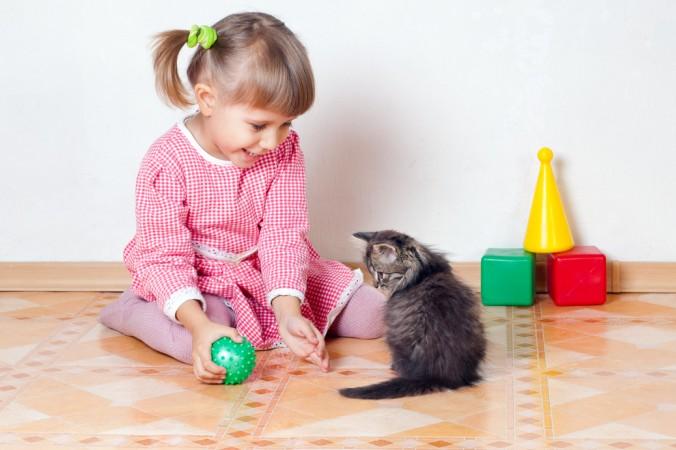 Die Gewöhnung von der Baby Katze an den Menschen gelingt am besten über katzengerechte Spielangebote. Gerade Kinder sollten den richtigen Umgang und das Spiel mit der Katze gezeigt bekommen. (#3)