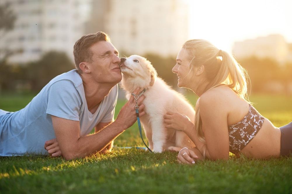 Es ist enorm wichtig, mindestens etwa eine Woche lang ununterbrochen für den neuen Hausgenossen da zu sein und ihn liebevoll zu umsorgen.(#04)