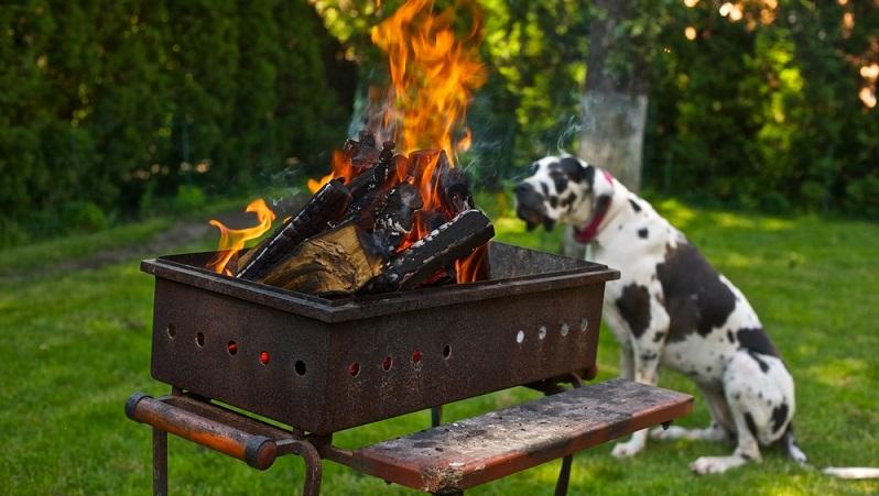 Neben den Gefahren, die beim Grillen mit Hund vom Grillgut ausgehen, sollten Hundebesitzer andere Punkte nicht vergessen. Wer mit einem klassischen Holzkohlegrill arbeitet, der muss ganz besonders aufpassen.