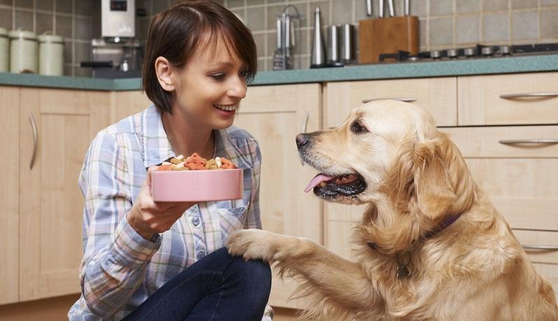 Wenn die Vermutung einer Futtermittelunverträglichkeit vorliegt, dann kommt es nun darauf an herauszufinden, was genau eigentlich das Problem für den Vierbeiner ist. (#01)