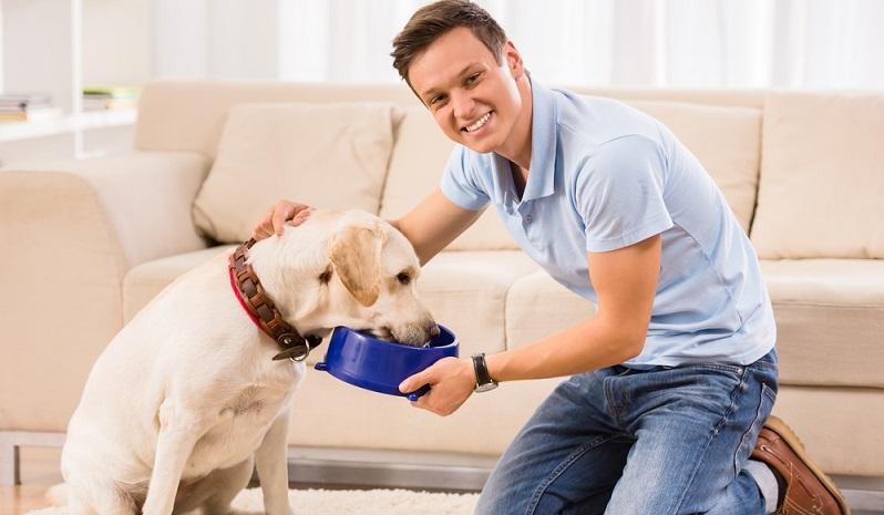 Hundehalter sind eine besondere Spezies Mensch und immer zu Streitgesprächen aufgelegt. Zumindest, wenn es um die Ernährung des vierbeinigen Lieblings geht, scheiden sich die Geister und die Lager spalten sich. (#01)