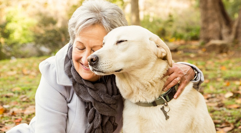 Wer ein Trauma durchlitten hat oder einen geliebten Menschen gehen lassen musste, findet in einem Hund einen Begleiter, der tröstet und den Seelenschmerz lindert. (#02)Wer ein Trauma durchlitten hat oder einen geliebten Menschen gehen lassen musste, findet in einem Hund einen Begleiter, der tröstet und den Seelenschmerz lindert. (#02)