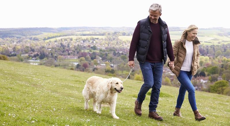 Der wohl wichtigste Grund: Hunde halten fit und gesund. (#01)
