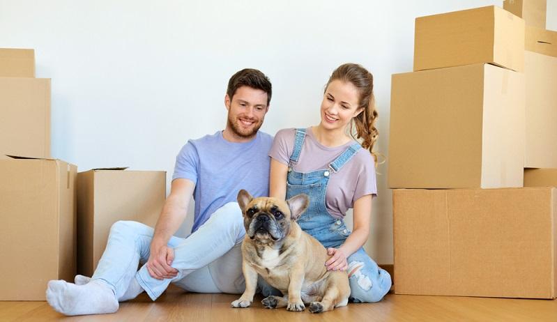 """Abgesehen von der Zustimmung des Vermieters gibt es aber noch weitere Hürden, die man bei der Wohnungssuche mit Hund beachten sollte. Denn das Tier sollte natürlich ebenfalls """"zustimmen"""" und sich in der neuen Bleibe wohlfühlen.(#02)"""
