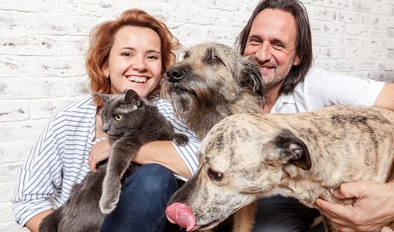 Wer eine Wohnung mit Hund oder Katze beziehen will, wird am ehesten erfolgreich sein, wenn von vornherein nach Wohnungsanzeigen Ausschau gehalten wird, die ausdrücklich Tierhalter erlauben.