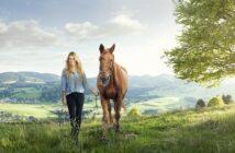 Vorsicht und Vernunft: Augen auf beim Pferdekauf!