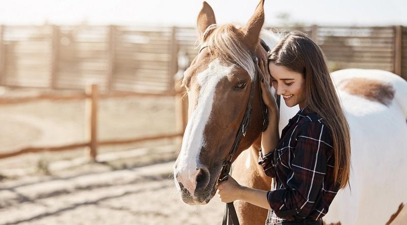 Sie interessieren sich für ein Pferd näher und sind vor Ort, um es anzuschauen. Ganz wichtig: Ein Reitpferd sollten Sie auch unbedingt Probe reiten! (#03)