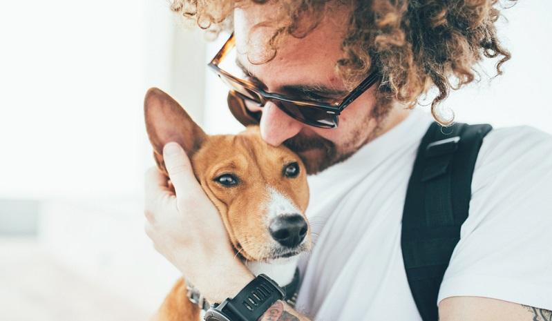 Meistens wird ins Zittern Angst oder Frieren interpretiert – doch dem muss nicht so sein: Hunde nutzen das Zittern gerne als Stressabbau genauso wie beispielsweise sich zu schütteln.