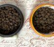 Vergleichstest Trockenfutter GENESIS und PLATINUM getreidefrei