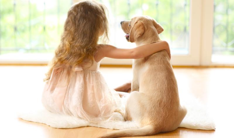 Heutzutage erfreut sich Labrador mit seinem kinderfreundlichen Wesen als Familienhund großer Beliebtheit.