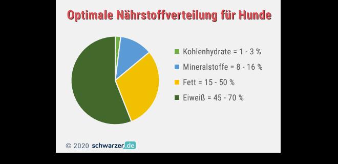 Infografik: Optimale Nährstoff-Verteilung für Hunde
