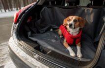 Ferienwohnung mit Hund: Tipps für einen großartigen Urlaub (Foto: shutterstock.com / Viktoriia Bu)