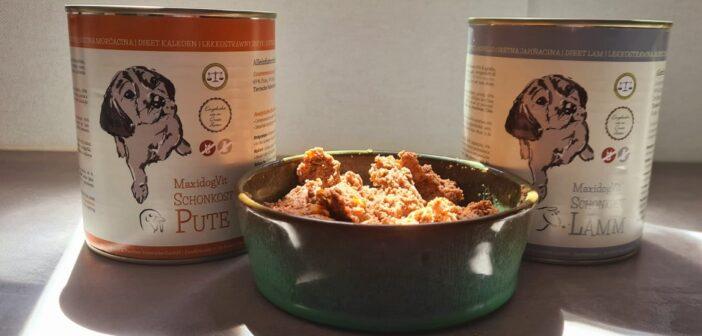 Welpen richtig füttern: Benötigen Junghunde spezielle Welpennahrung?