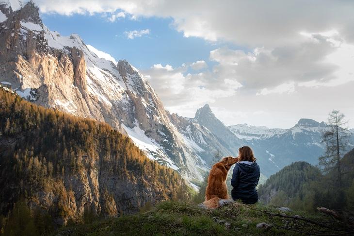 Auch in den Bergen gibt es viel zu Erledben. (Foto: shutterstock.com / dezy)