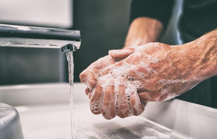 Gründliches Händewaschen ist besonders wichtig beim BARFen. Dennoch ist das Risiko für Krankheiten sehr groß. (Foto: shutterstock.com / Maridav)