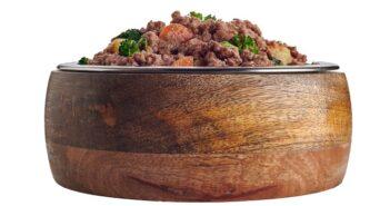Hund krank durch BARFen: Keime im Rohfleisch (Foto: shutterstock.com / stockcreations)